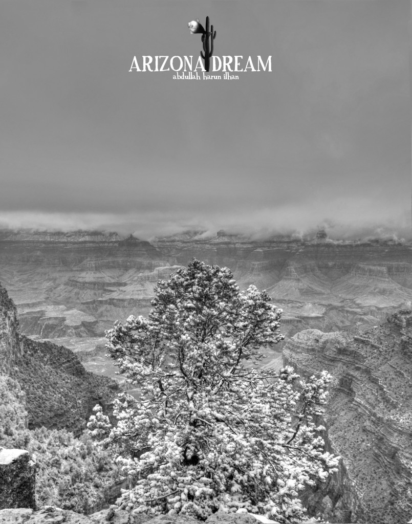 aharunilhan arizona dream