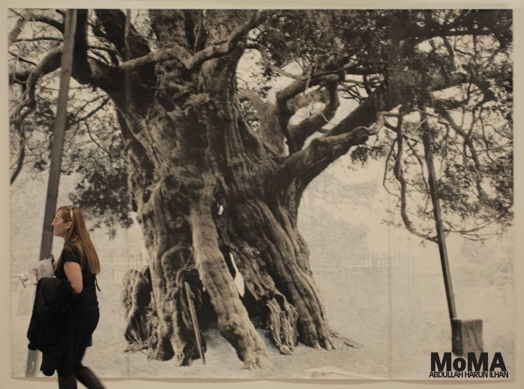 MoMA - Aharunilhan